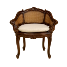 French Louis Bergere Chair