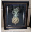 Brookshaw Pineapple in ebony coloured frame