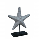 Starfish White on Black Marble Base – Large