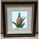 Small Queen Pineapple Print in Classic Frame