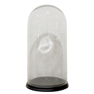Tall Glass Dome on Black Base